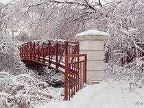 Snow Way or No Way by Irfan Gillani