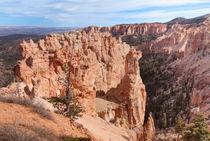 Black Birch Canyon Lookout von John Bailey