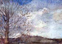 Landscape by aerostato