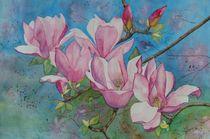 Magnolien by Sabine Sigrist