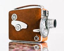 Windsor-birds-snow-old-cameras-018-keystone-kodak64filmlook