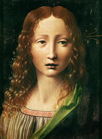 Head of the Saviour by Leonardo Da Vinci