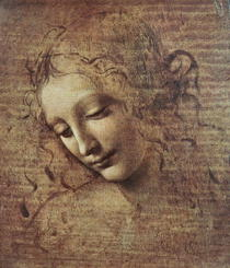Head of a Young Woman with Tousled Hair or, Leda by Leonardo Da Vinci