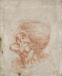 Karikaturistische Studie eines Kopfes eines alten Mannes von Leonardo Da Vinci