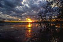Berlin Sunset von Shiva B.