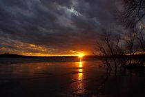 Sunset von Shiva B.