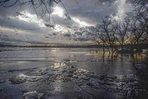 Havellandschaft im Winter von Shiva B.