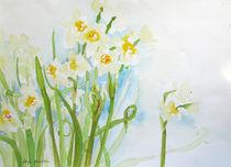 chinesische Osterglocken von Sonja Jannichsen