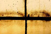Window von Steve Ball