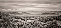 Smoky Mountains Panorama BW by Heather Applegate