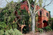 Ruine Steglitz von Henning Hollmann