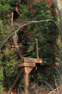 Verfallene Treppe von Henning Hollmann