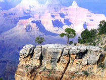 Grand Canyon 1 von will-borden