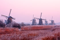 Winter at Kinderdijk in the Netherlands by nilaya