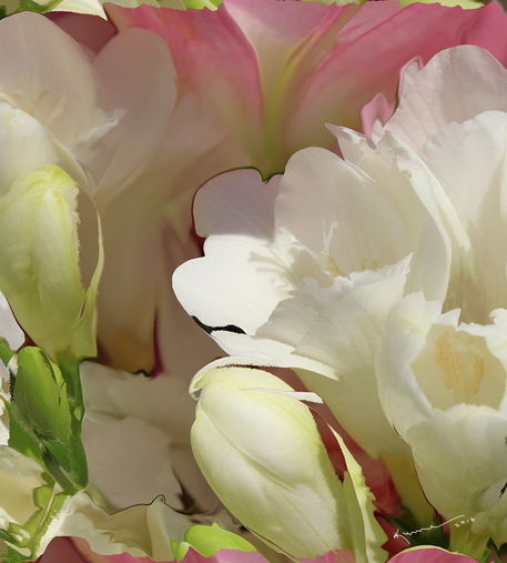 All-the-flower-petals-in-this-world-11