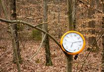 Uhr an einem Baum im Wald - seltsamer Fund von Matthias Hauser