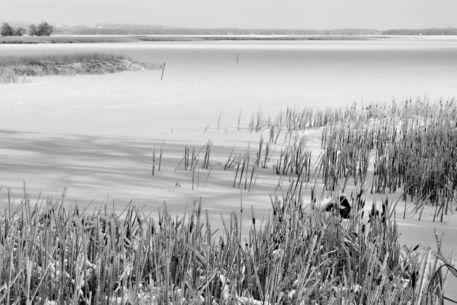 Frozen-lake0304