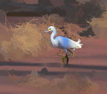 Snowy Egret by Louise Heusinkveld