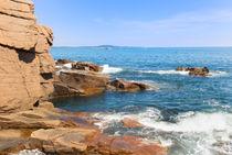 Rugged Shore by John Bailey