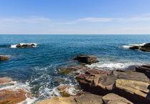Acadia Shores by John Bailey
