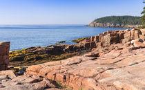 Otter Point Shoreline von John Bailey