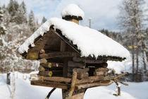Vogelhäuschen aus Holz im Winter mit Schnee by Matthias Hauser