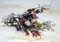Malen-am-meer-strandgut-aquarell