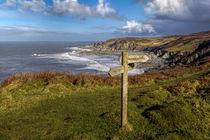Bull Point North Devon by Dave Wilkinson