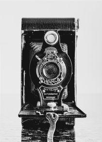 Windsor-birds-snow-old-cameras-011-straightened-400filmlook2