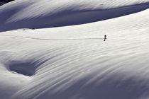 Lone Ranger by Michael Truelove