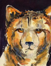 Gepard mit bernsteinfarbenen Augen von Sonja Jannichsen