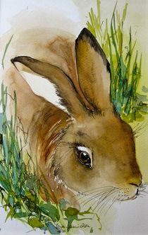 Hase oder Osterhase? von Sonja Jannichsen