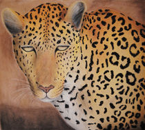Leopard Sketch by Amy Harmse