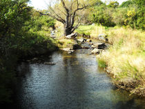 River in the Drakensberg by Amy Harmse