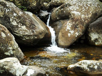 Spring Water on the Drakensberg Mountain Range by Amy Harmse