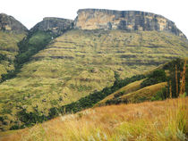 Drakensberg Mountain Range by Amy Harmse
