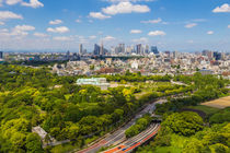 Tokyo 30 by Tom Uhlenberg