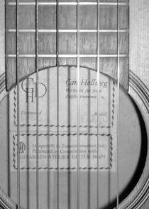 Schattensaiten von Irena Berger