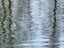 Reflections-on-the-ice