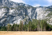 Yosemite Valley Wall von John Bailey