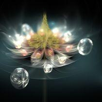 Flower and drops von Giorgio  Perich