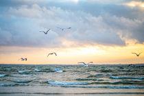 Ostsee - baltic sea von Ruby Lindholm