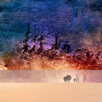 Desert-Dream 1 von Pia Schneider