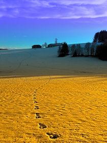 Farbprächtiges Winter Wunderland | Landschaftsfotografie von Patrick Jobst