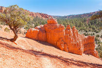 Hiking At Red Canyon State Park by John Bailey