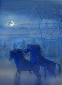 Nebel-Pferde von Heidi Schmitt-Lermann