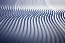 Groomer Tracks by Michael Truelove
