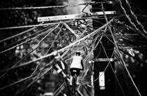 Electric Bicycle Lane von JACINTO TEE