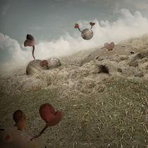 Dziurkulestan by Grodner Buchholz