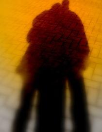 ShadowSharing von fauve